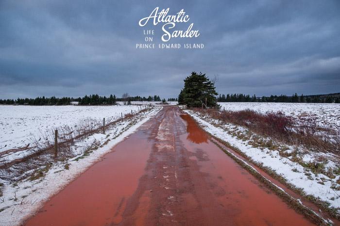 a walk through wintry fields - Souris